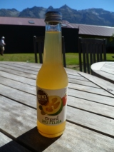 Apple and feijoa juice in Glenorchy. Pretty tangy.